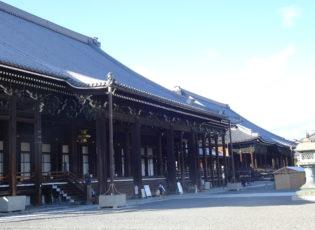 西本願寺の大イチョウを見に行きました🚙=