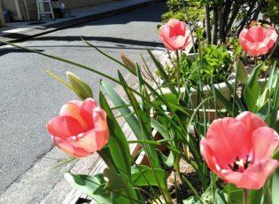春は旅立ちと出会いの季節