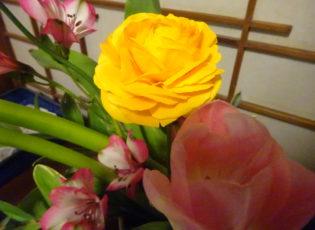 生け花の贈り物❁