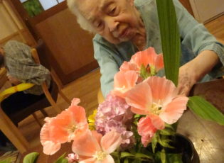 花の寄せ植えを楽しんでいます。